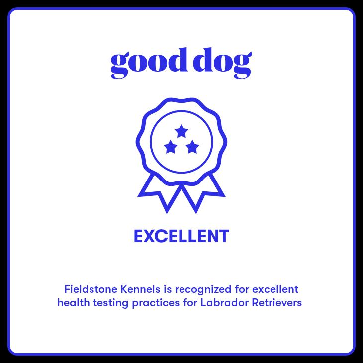Good Dog Health Excellence